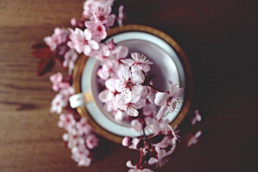 Fleurs de printemps à la maison
