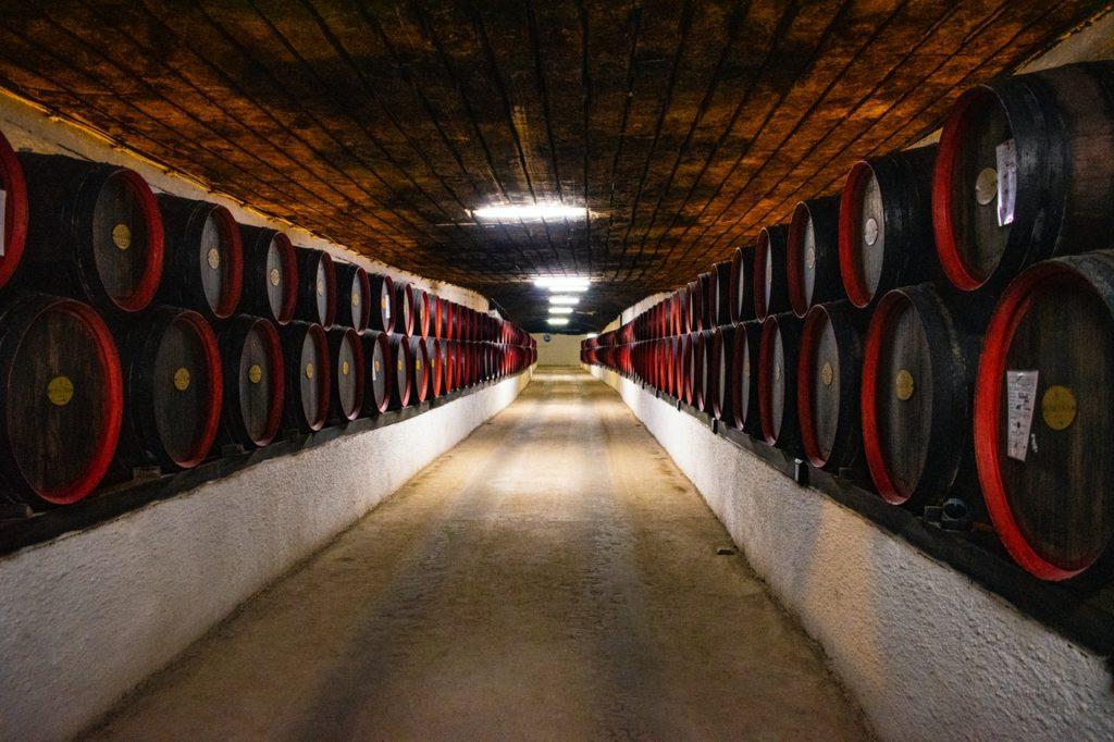 Déterminez comment vous voulez utiliser votre cave à vin