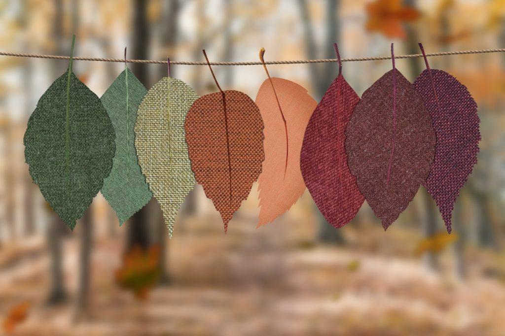 Organisation et décoration d'automne
