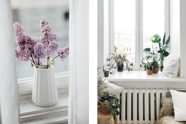 jolis pots vases et plantes